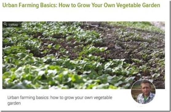 gardening classes via video camera and internet