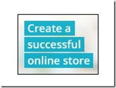 create a sucessful online s tore and business
