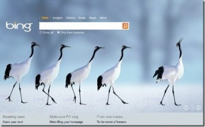 Animated Desktop background with Bing wallpapers
