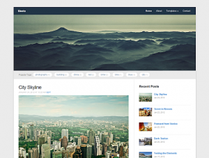 Amazing Free premuim wordpress WPZOOM theme