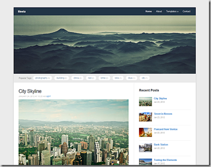 meeta theme by wp zoom