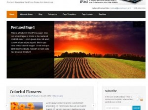 The new wordpress theme that's truly radiant