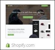 the shopify.com storefront platform for business