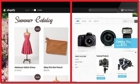 diferrent kind of stores online 2017