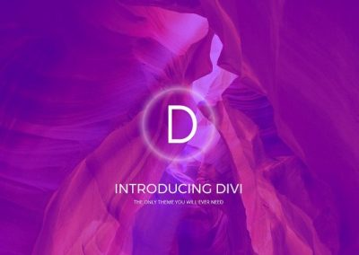 divi crazy themes