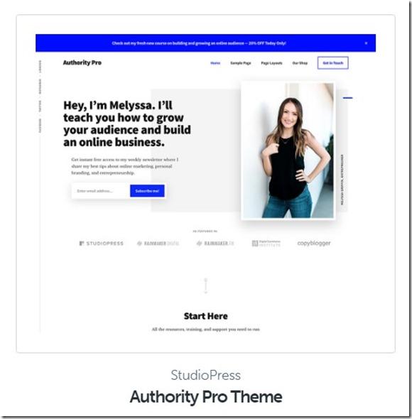 top seo optimized wordpress theme authority pro
