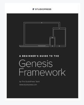 online guide genesis framework